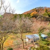 *【和室一例】窓の外の景色は、季節の移ろいを感じさせてくれます。
