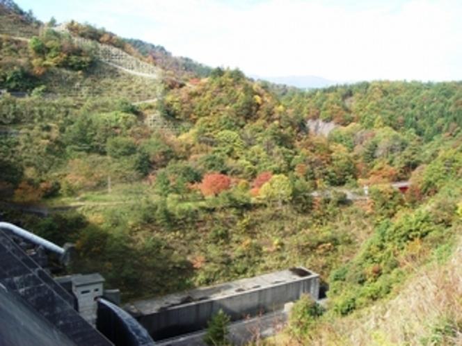 大石ダムの紅葉は10月末から見ごろです!