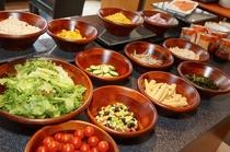 <朝食バイキング>  彩り豊かなサラダコーナー!