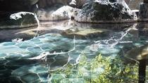 *【女性大浴場】名湯芦安温泉を源泉かけ流しで湯量たっぷり!