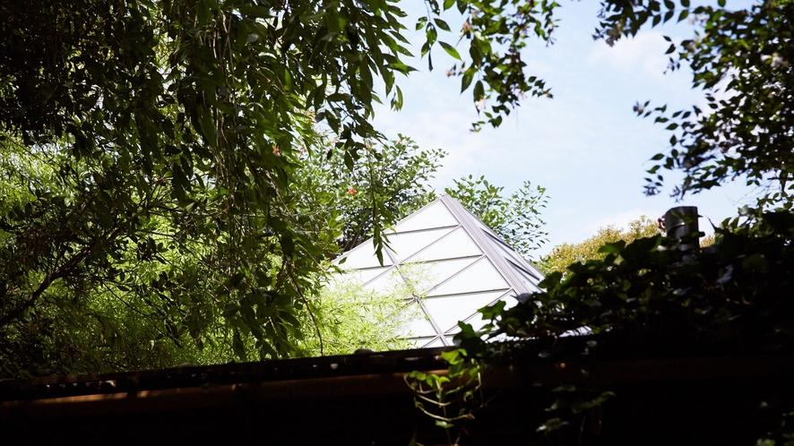 庭園露天風呂のガラスの参画屋根。