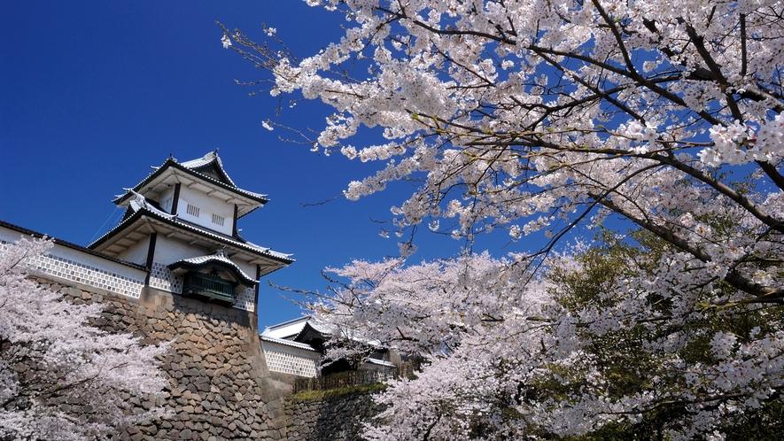 【春】 金沢城  金沢城公園まで徒歩3分の好立地