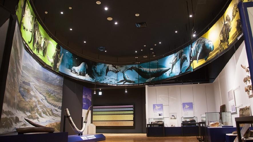 北海道博物館「第1テーマ 北海道120万年物語」