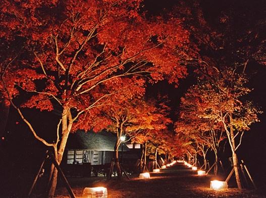 【添い寝歓迎】自由気ままな素泊まりプラン♪富士の眺望風呂◎