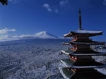 冬の忠霊塔