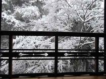 降り続く粉雪