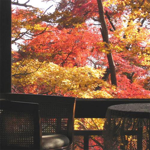 竹の間紅葉