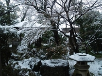 雪景色1(日本庭園)