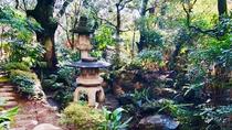 山水 庭園