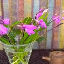 ポジャギと花と