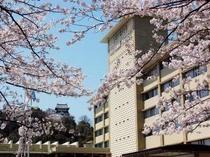 ホテル 桜と犬山城