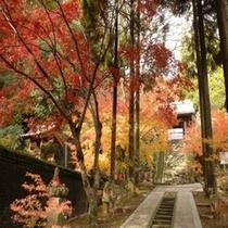 廣福寺紅葉