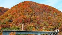 *【鬼怒川の紅葉(イメージ)】色とりどりに色づく山々は、秋だけの特別な景色です。