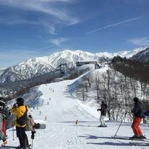白銀の立山と能登半島を望む立山山麓スキー場
