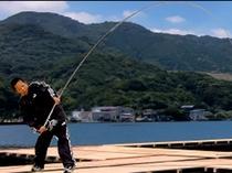 家族で楽しめる釣り堀プランございます。