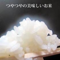 ツヤツヤのお米