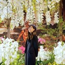 宮殿の空間いっぱいに広がる蘭のアート作品