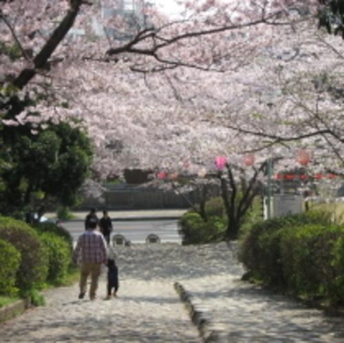 偕楽公園【当館から徒歩約5分】