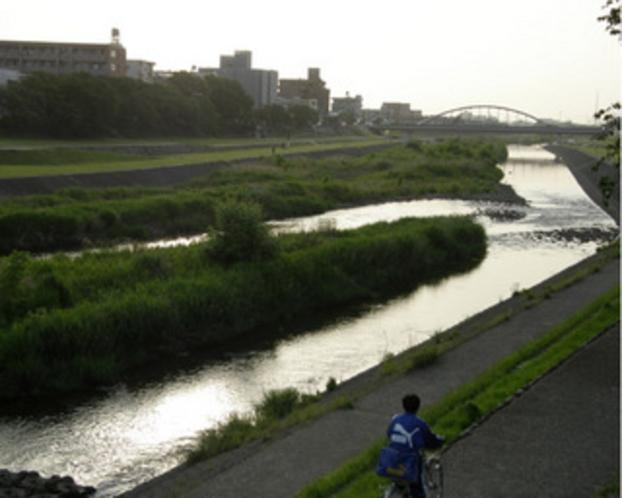 初夏の犀川の風景