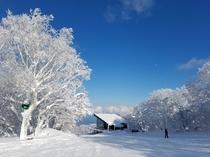 【スキー&スノボ】函館七飯スノーパーク!