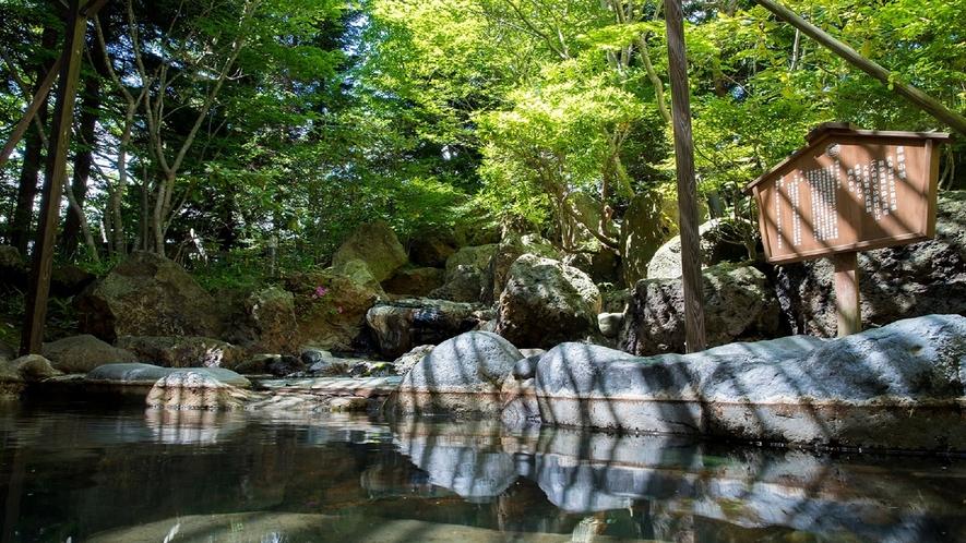 自然感じる岩造り庭園風呂