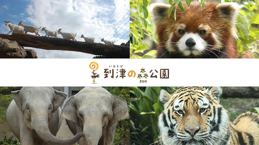 到津の森公園_イメージ