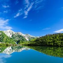 [八方尾根]風のない日は鏡のような八方池。