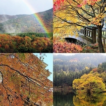 能登の紅葉は10月下旬から/宝達山、永光寺、妙成寺、蛇ヶ池など