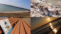 [観光]増穂浦海岸(車で約23分)小貝拾い、世界一長いベンチなど*