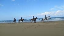 [観光]千里浜なぎさドライブウェイ(車で約25分)*