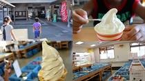 [観光]道の駅ころ柿の里しか・旬菜館(車で約5分)物産販売所では志賀町特産ころ柿ソフトクリームが*