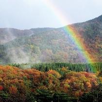 宝達(ほうだつ)山の紅葉は11月中旬から12月上旬が見頃(山頂まで約60分)