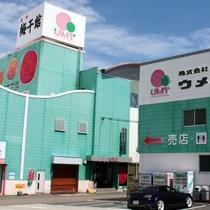 【日本一の梅里ならではのお楽しみ】ホテルから車約5分の梅干館で自分だけの梅土産をつくろう♪