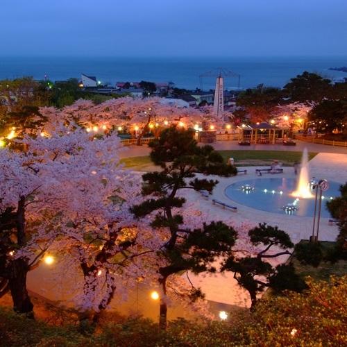 夜桜函館公園