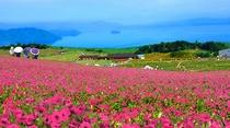 びわこ箱館山 2020夏営業イメージ