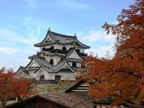 秋の彦根城