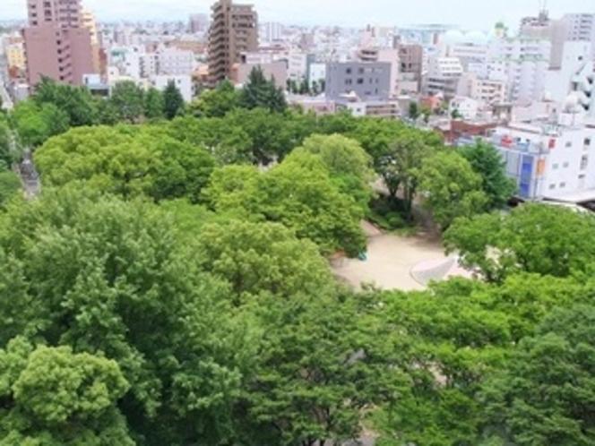 ホテル裏の公園