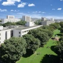周辺大学:中部大学