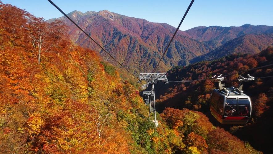 【観光施設】谷川岳ロープウェイ