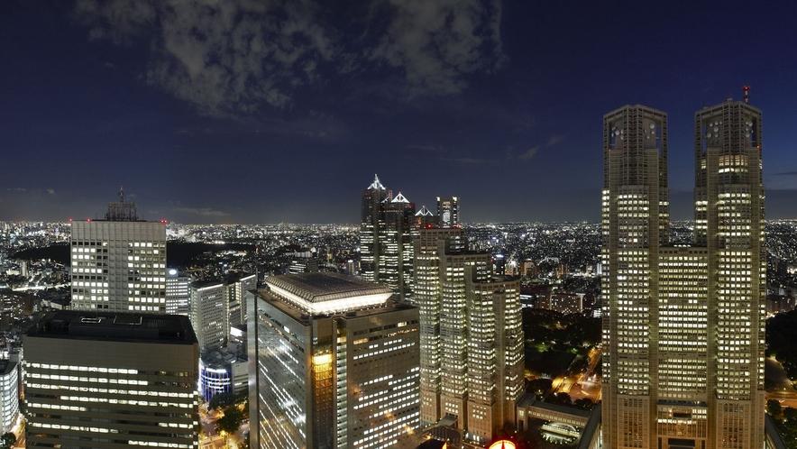 高層階からの眺め(一例)