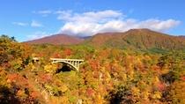 鳴子峡~紅葉シーズン