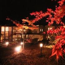 中庭紅葉ライトアップ