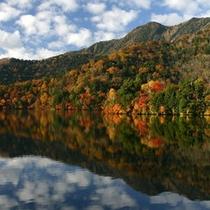 湯の湖紅葉
