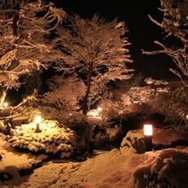 中庭雪のライトアップ1