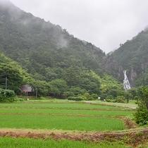 *ホテルとログハウスの谷奥にございます名水百選に選ばれている「深浦滝」。