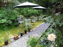 こけ芝と花々のガーデンテラス