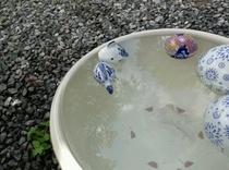 水鉢の君たちも涼やかにハートマークですね。