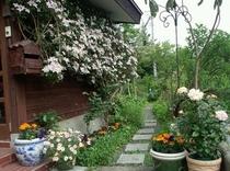 玄関から中庭へ