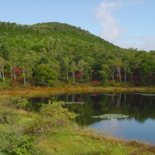 紅葉の一沼