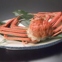 茹で蟹 姿
